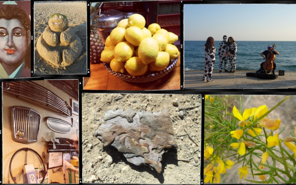 A montage of images from Sitges and Parc del Garraf