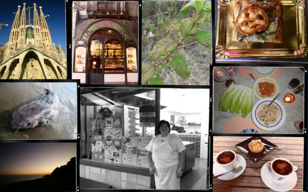 A montage of imnages taken from various places in Spain