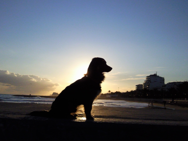 Sweep in magnificent profile at Sitges