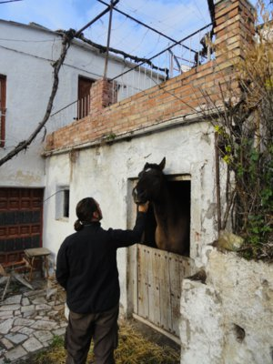 man and horse in mountain village