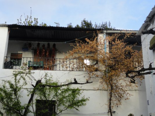 typical Andalusian house