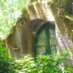 Pena in Sintra - the gardens (1)
