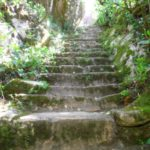 Pena in Sintra - the gardens (3)