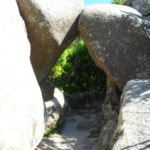 Pena in Sintra - the gardens (5)