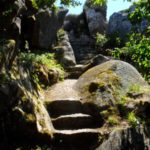 Pena in Sintra - the gardens (7)