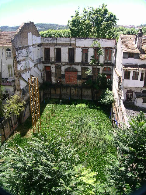 A house turned natural wilderness in Coimbra